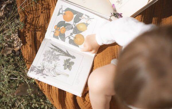 Baby_bøger